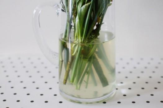 Добавьте аспирин в вазу с цветами, что продлит жизнь букета ещё на пару-тройку дней