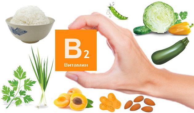 витамином В 2 богат горох, зелень, сухофрукты и кабачки